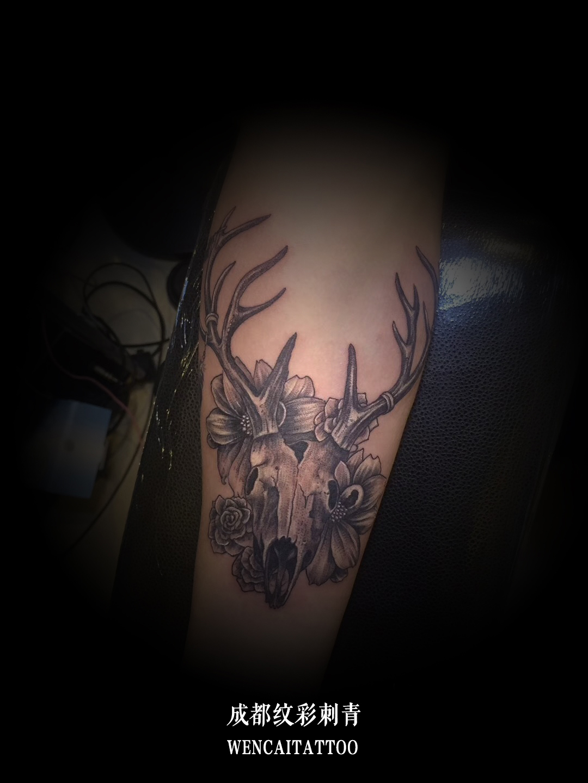 成都的兰先生小臂上的骷髅羊头纹身图案