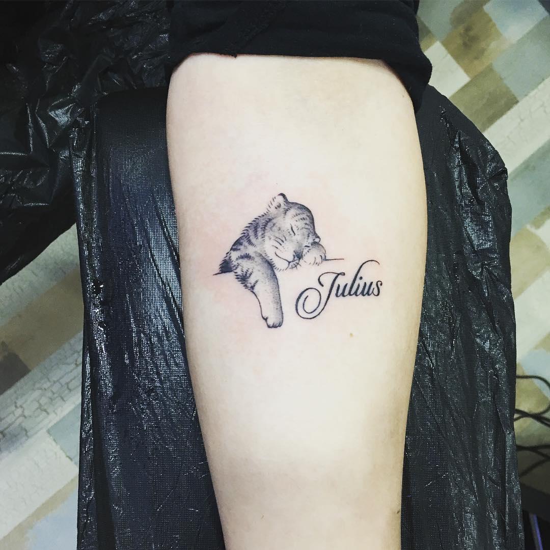 小臂小清新猫咪英文字纹身图案图片